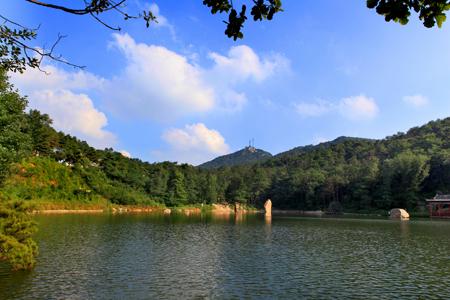 鲁山国家森林公园官方网站|淄博鲁山国家森林公园|4a